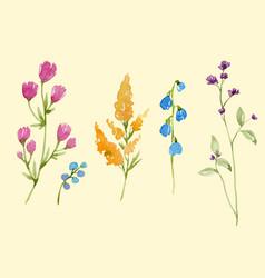 Watercolor floral set vector