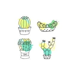 Succulent cactus hand drawn vector image