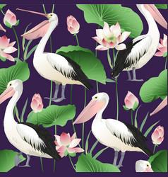 tropical exotic print with pelicans image vector image vector image