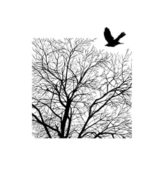 winter tree in a square vector image vector image