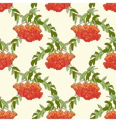 Rowan seamless vector image vector image