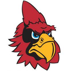 cardinal head logo mascot vector image