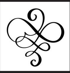 hand drawn border flourish separator calligraphy vector image