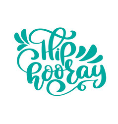 hip hooray text greeting and birthday card vector image