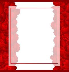 red carnation flower banner card border vector image