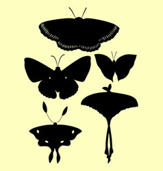 set butterfly silhouettes vector image