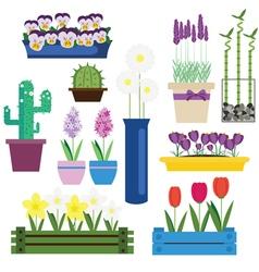 Indoor and Garden Flowers in Pots Set vector image