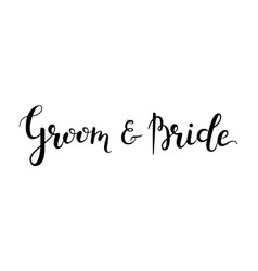 groom and bride hand-drawn lettering decoration vector image vector image