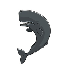 Cachalot sperm whale isolated icon vector image