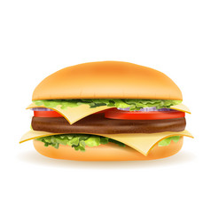 classic hamburger with meat chop tomato onion and vector image