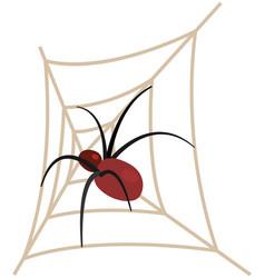 dangerous insect tarantula in woven web vector image