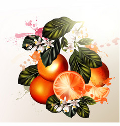 realistic oranges with flowers for design vector image
