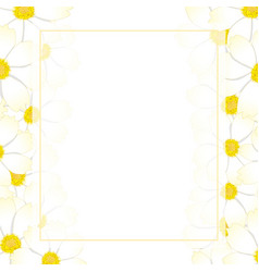 White cosmos flower banner card border vector