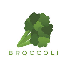 Broccoli logo and text for designs vector