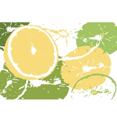 Citrus abstract backdrop vector image vector image