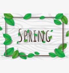 creative spring season background decorative vector image
