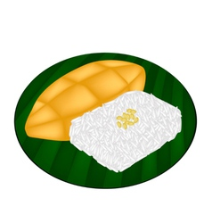 Delicious Sweet Sticky Rice with Ripe Mango vector