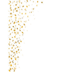 Gold star confetti celebration isolated on white vector