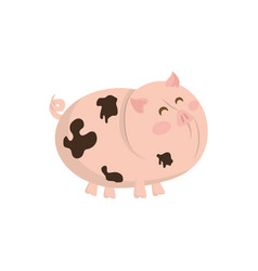 Pork farm animal vector