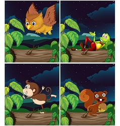 Scenes with animals at night vector image