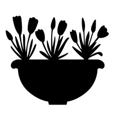 Silhouette crocus in flowerpot vector