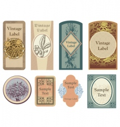vintage vector labels vector image