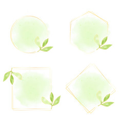 watercolor green leaves with gold wreath frame vector image