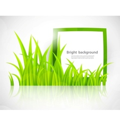 Green frame in grass vector image
