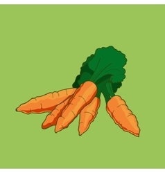 Cartoon style carrot vector image