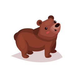 cute brown bear cub cartoon vector image
