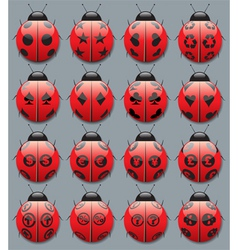 ladybug symbols vector image