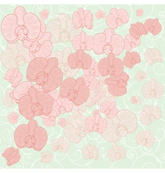 Orchid background vector