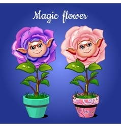 Two roses in pots vector image