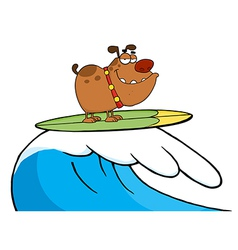 Happy Dog While Surfing vector image