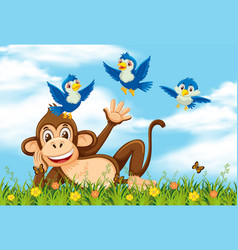 happy monkey and bird in nature vector image