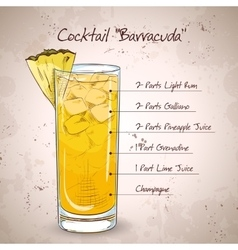 Hard drink Cocktail Barracuda vector image