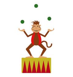 isolated circus monkey vector image