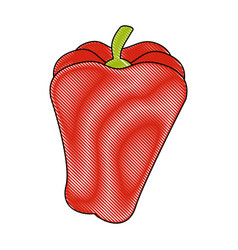 Isolated cute pepper vector