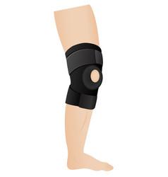 knee bandage vector image