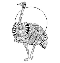 ostrich bird coloring book vector image
