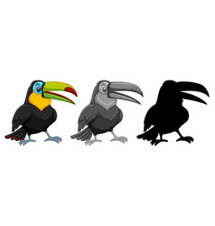 set of toucan character vector image