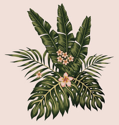 tropical leaves and flowers composition hawaiian vector image