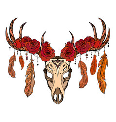 A deer skull with roses feathers and boho patte vector