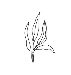 beautiful plant in minimal line style modern vector image