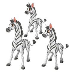 Cartoon zebra on white background animal vector
