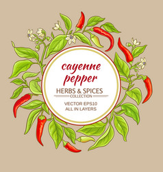 Cayenne pepper frame vector