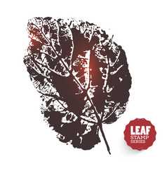 design leaf vector image