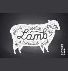 poster with red lamb silhouette lettering vector image