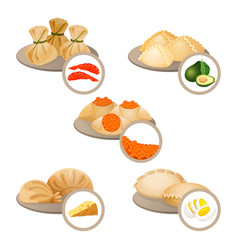 Dim-sum treats in plates set wrapped dough with vector