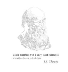 Charles Darwin typographic design with citat vector image